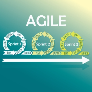agile process flow